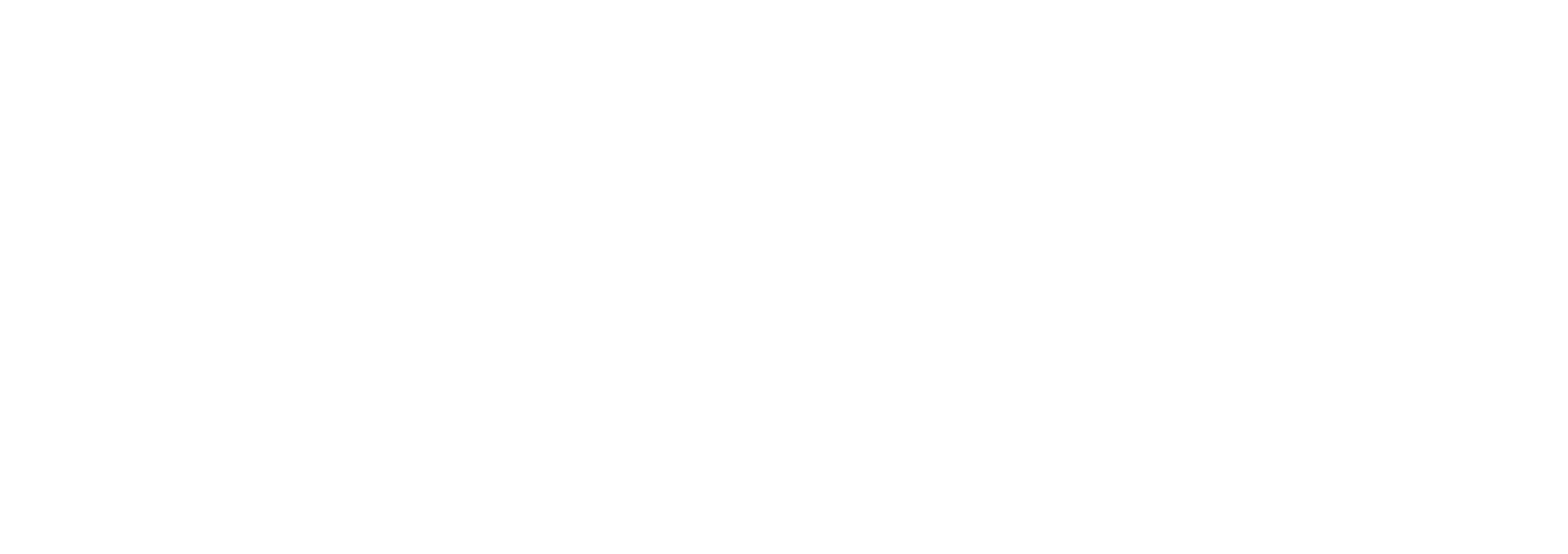 Customtronics Name and Logo-White-V2